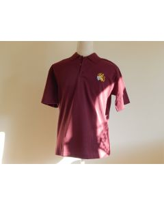 The Wyvern Primary School Polo Shirt
