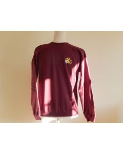 The Wyvern Primary School Sweatshirt